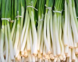 What you need to know about green onions – nutrition & benefits
