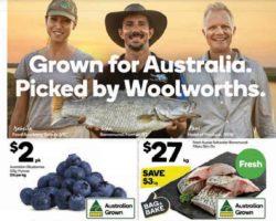 Woolworths Catalogue 6 November - 12 November 2019